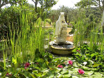 Le coin zen du jardin
