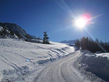 Le sentier d'accès aux pistes