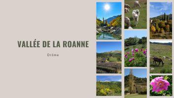 Au coeur de la Vallée de la Roanne