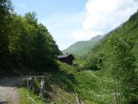 chemin d'alpage à 2km du chalet