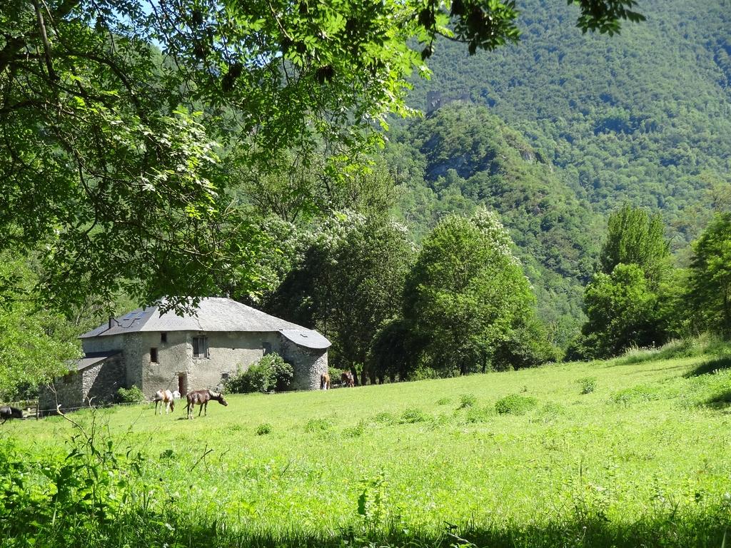 Vue extérieure depuis l'entrée de la ferme