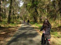Ondres le vélo est roi même en pleine forêt c'est plat