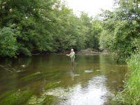 Pêche dans notre rivière: La Cure.