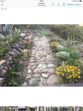 Jardin paysager au printemps