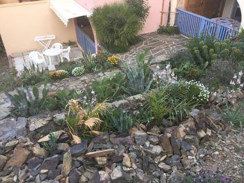 Jardin paysager+terrasse solarium