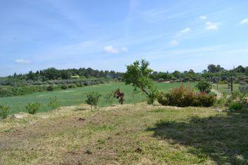 paysage bucolique ouvert sur les chmps et la garrigue...